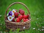 Cesta sobre la hierba con fresas y flores
