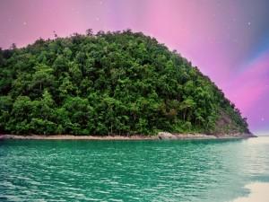 Postal: Mar junto a una isla con grandes árboles