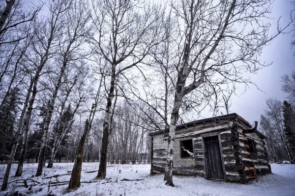Cabaña de madera en el frío bosque