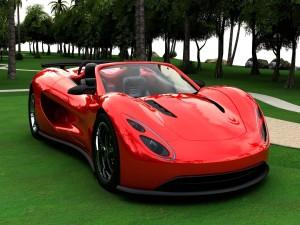 Deportivo de color rojo sobre la hierba