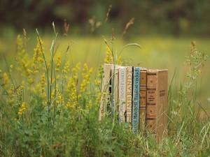 Libros sobre la hierba