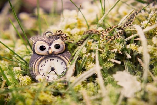 Reloj con forma de búho