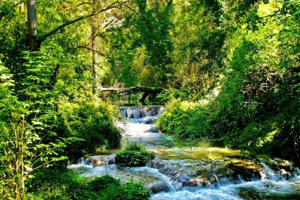 Estrecho río fluyendo en la naturaleza