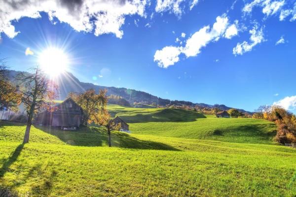 El brillo del sol sobre la verde hierba de la montaña