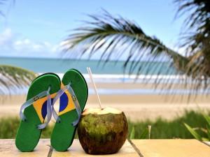 Brasil 2014, disfruta del Mundial