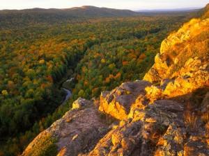 Postal: Preciosas vistas del río entre los árboles