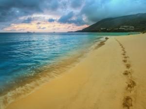 Pisadas en la arena de la playa