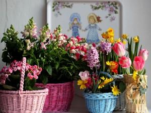 Cestas de mimbre con plantas y flores