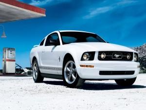 Mustang blanco en una gasolinera