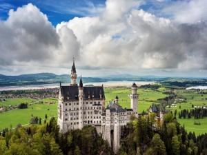 Árboles junto al castillo de Neuschwanstein (Alemania)