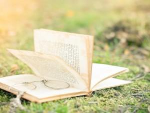 Un libro y gafas sobre la hierba