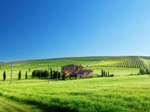 Campos sembrados y una gran casa