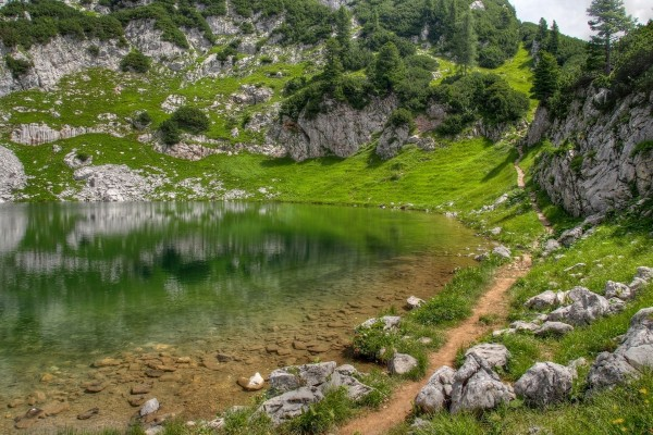 Ladera verde junto al lago