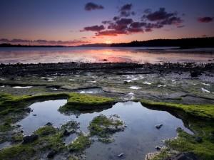 La orilla de un lago al atardecer