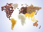 Cereales y legumbres formando un mapamundi