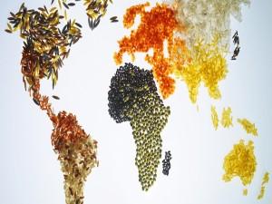Mapamundi formado con granos de arroz y otras semillas