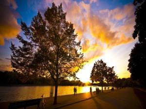 Postal: Paseando por el parque al atardecer