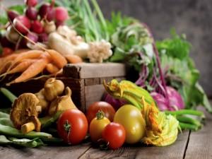 Postal: Tomates, setas, flores de calabacín y otras verduras
