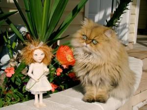 Postal: Un gato mirando a la pequeña muñeca
