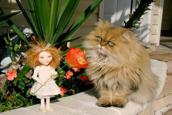Un gato mirando a la pequeña muñeca