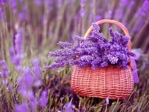 Canasta con flores lilas