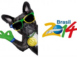 Postal: Divertido perro con el logo del Mundial Brasil 2014
