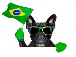 Postal: Perro con gafas y bandera de Brasil animando el Mundial 2014