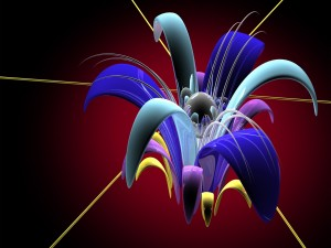 Postal: Pétalos de una flor en diversos colores
