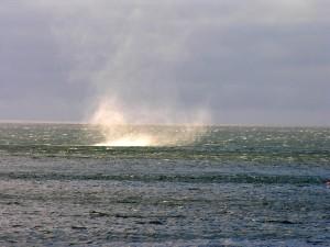 Postal: Torbellino en mar de Barents, Noruega