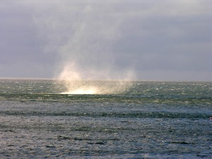 Torbellino en mar de Barents, Noruega