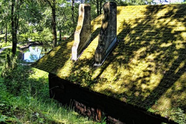 El tejado de la casa cubierto de musgo