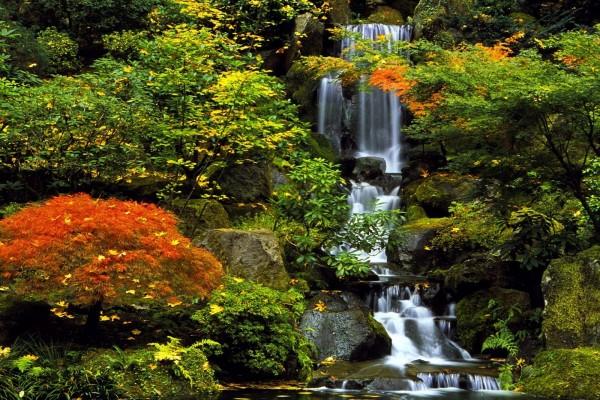 Una cascada vista en otoño