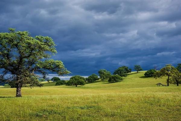 Nubes sobre un paisaje verde