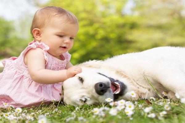 Una hermosa niña jugando con su perro