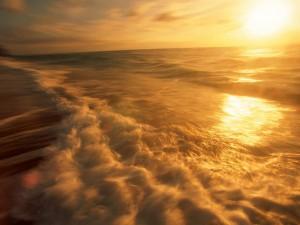 Postal: La luz del sol sobre el agua del mar