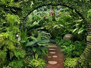 Postal: Un frondoso y cuidado jardín