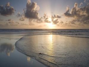 Postal: La orilla del mar al atardecer