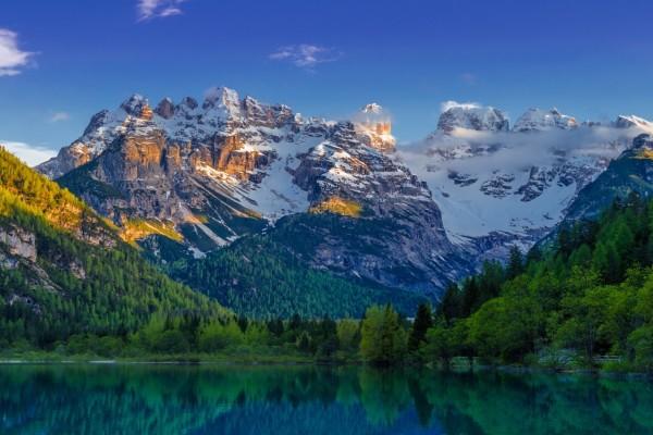 Abetos y montañas nevadas junto a un lago