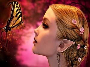 Hada comunicándose con la mariposa