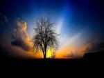 Resplandor en el cielo al atardecer