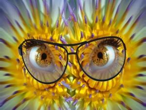 Postal: Flores con ojos y gafas