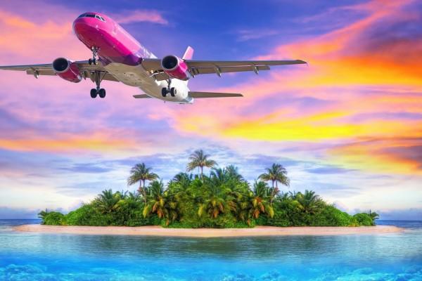 Avión volando sobre una isla cubierta de vegetación
