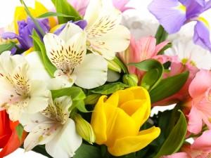 Postal: Hermoso ramo primaveral