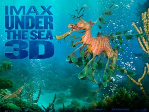 Postal: Bajo el Mar 3D Imax