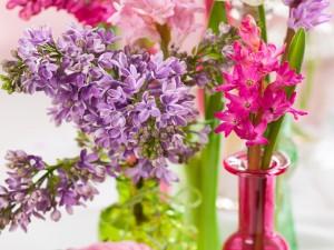 Postal: Flores en recipientes de vidrio