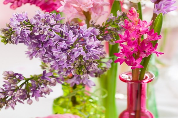 Flores en recipientes de vidrio