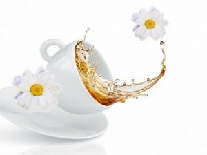 Taza de té y margaritas blancas