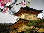Templo del Pabellón de Oro (Japón)