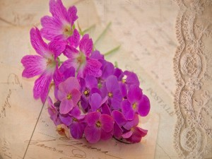Flores púrpura sobre unas cartas