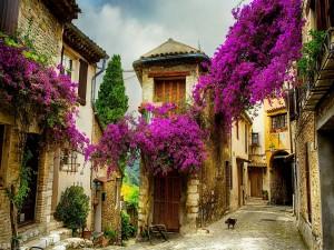Postal: Casas de un pueblo adornadas con flores lilas